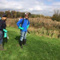 Kent County Invasive Species Strike Team