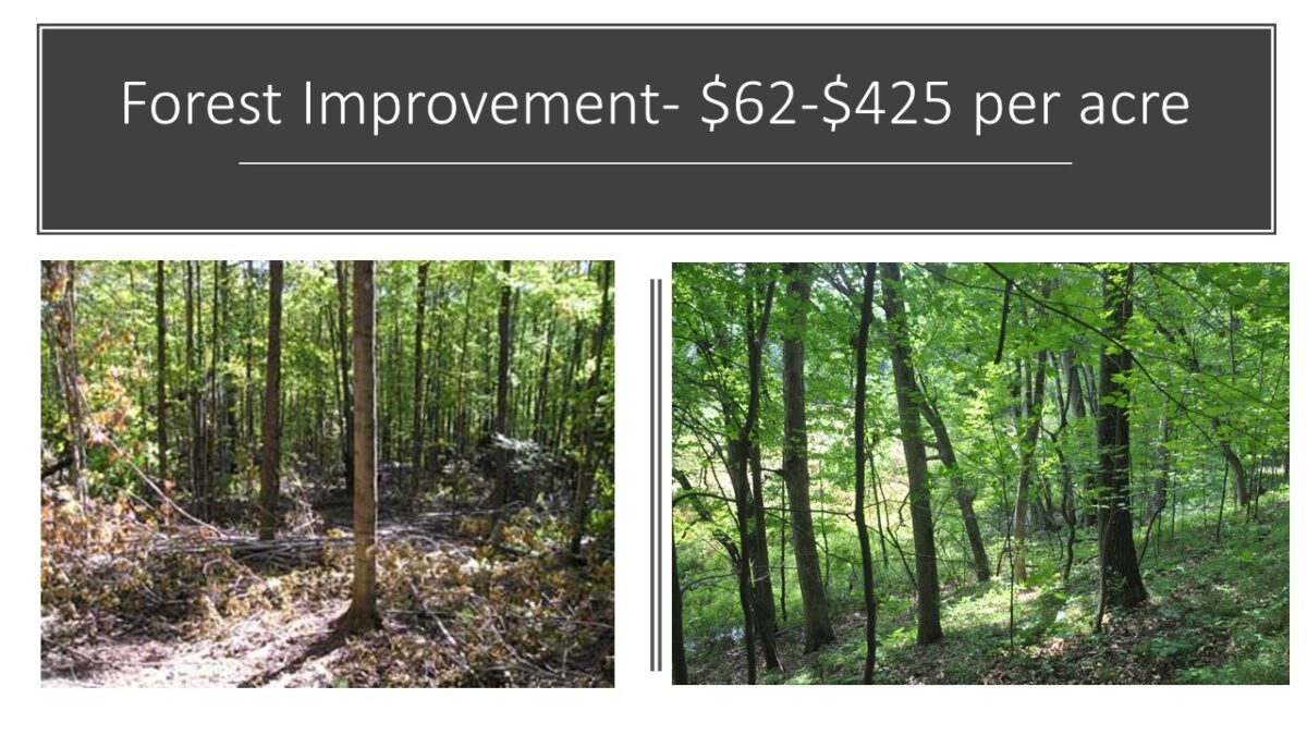 Farm and Forest Funds - Regional Conservation Partnership Program
